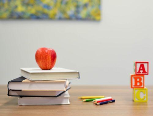Adaptacja w żłobku, przedszkolu i powrót Mamy do pracy - jak się przygotować?